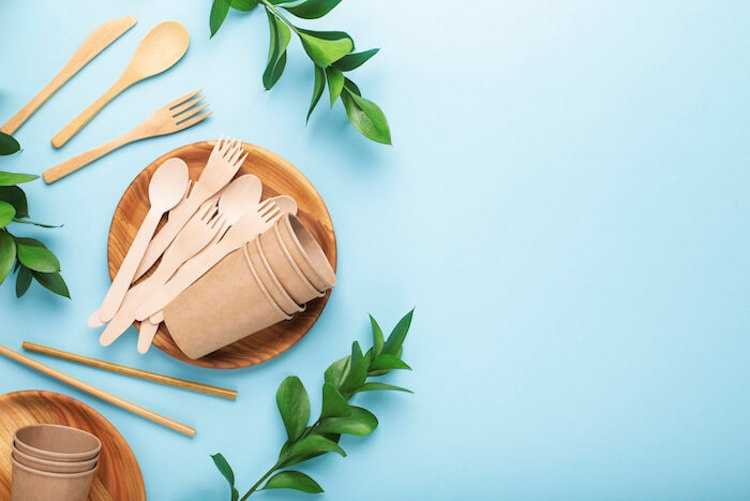 Eco-friendly reusable utensils and plants